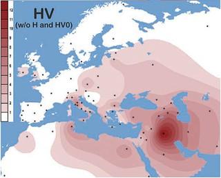 Mitochondrial haplogroup HV contour map