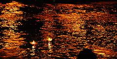 Floating Faith.... (Krins) Tags: life flowers light india water hope faith belief ganga aarti diyas holywater haridwar thepca krina riverganga 18125mm d80 krins pcatextures pcaorange