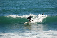 DSC_0180.JPG (ellswrthr) Tags: las surf gaviotas