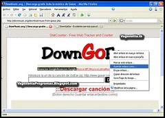 DownGoEar 2