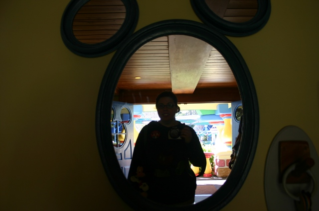 reflection at mickeys house