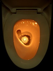 diya-in-commode (Stuti ~) Tags: loo orange glow candle toilet pot western bigmomma thechallengefactory