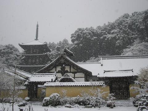 当麻寺(雪景色)-03