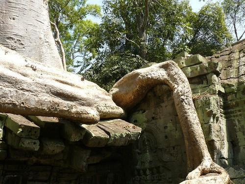 Cambodge - Angkor #85