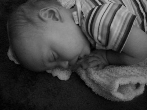 Sleeping Macie