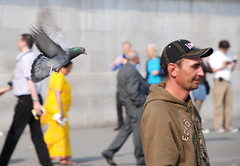Bird Brain - Behind you! (pastamaster39) Tags: life street people urban man bird london public race walking flying focus pigeon flight beak trafalgarsquare follow human cap behind procession flapper moment flapping 2008 behindyou avian unaware decisivemoment lonsdale collisioncourse followtheleader momentintime squark