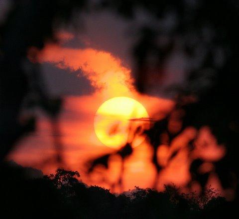 sunset bandipur 260408