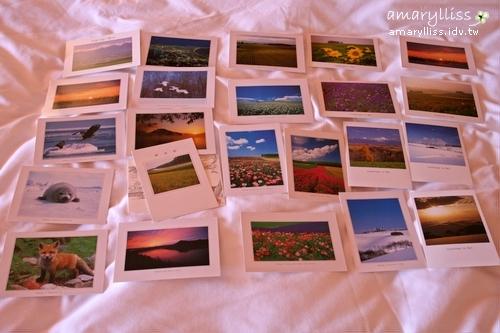 躺在床上的明信片們