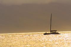 On Golden Ocean (Maegs) Tags: hawaii mauihawaii