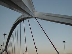 otra perspectiva.... (ellamiranda) Tags: espaa puente sevilla barqueta octubre07