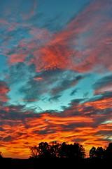 FIRE !!! (fabiogis50) Tags: sunset red sky italy cloud clouds canon italia tramonto nuvole pisa toscana polaris outstandingshots passionphotography abigfave superbmasterpiece diamondclassphotographer ysplix platinumheartaward excellentphographerawards theperfectphotographer goldstaraward pisasocialevent itswritteninthestars