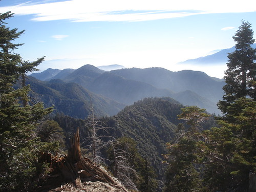 Views East from Little San Gorgonio