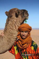 Camel and local boy (wprasek) Tags: boy hot nature ecology animal animals ma sand scenery rocks desert empty wildlife dry sunny dirt camel morocco land beast environment local creatures creature desolate mammals barren environmentalism beasts harsh ecosystem zoology ruminant ruminants westernsaharadesert tagounite undomesticatedanimals saharadesertsanddunes folioworldcultures warrenprasek xoodu wprasek wwwxooducom wwwwprasekcom