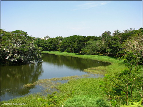 Karanji Lake Landscape 3