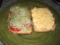 Egg Salad Sandwich with Sprouts