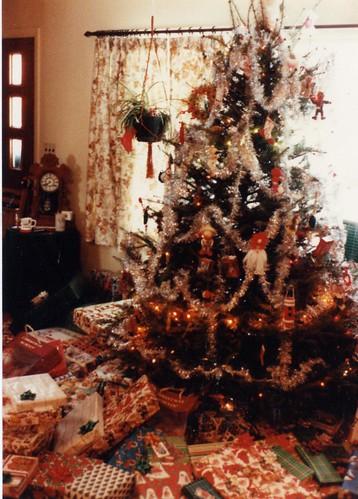 tree_tracy.jpg
