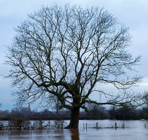 16th January: flood