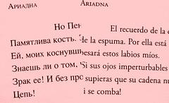 Lenguajes (4)