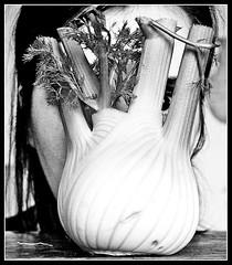 64. Faccia da. (esci_le_foto) Tags: selfportrait face vegetables bn viso verdura finocchio 365days