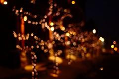 Bokeh Trees (Js) Tags: trees toronto ontario canada tree lights raw nef bokeh gimp 50mmf18d ufraw imnotcrazy nikond40 thedistilery