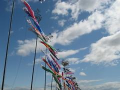 Fish kites flying