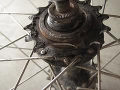 Broken Track Cog