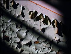 peeling paint (sulamith.sallmann) Tags: light shadow wallpaper texture deutschland licht factory decay background fabrik struktur surface structure peelingpaint farbe schatten abondoned hiddenplace verlassen hintergrund oberfläche textur betrieb lostplace lehnitz abgeblättert sulamithsallmann abgeplatzt klinkerwerk