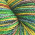 Spring Rainbow BFL Yarn - 5.5 oz *Discount*