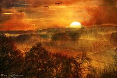 summer heat (VooDoo Works) Tags: summer fall sunset texture landscape nature