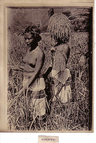 Igorot girls in a farm - Philippines 1911 indigenous Philippine Buhay Pinoy Noon old pictures photograph black and white Philippines  Filipino Pilipino  people photos life Philippinen  tribe
