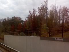 1113070642.jpg - I love autumn