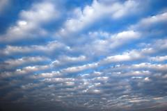 Crazy Cirrus Clouds (wyntuition) Tags: blue sky clouds washingtondc dc washington districtofcolumbia cirrus