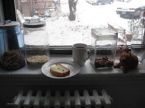Perfect Morning, SnowDay