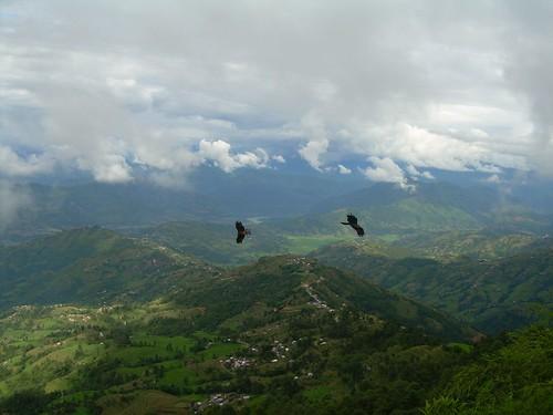 Aguilas en el Valle de Kathmandu