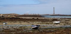(Magali Deval) Tags: lighthouse france boat bretagne breizh lowtide bateau phare marebasse ilevierge