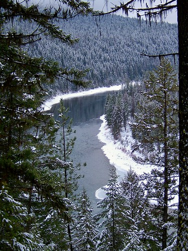 The Clark Fork seen from trail 223