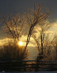 hier soir 2 (Guylaine2007) Tags: winter sunset landscape soleil hiver ciel paysage soir arbre givre photoquebec goldstaraward lysdor