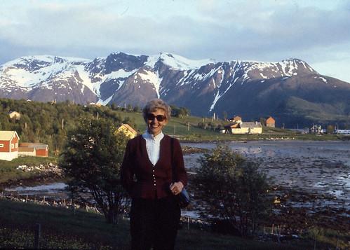 Halsa 1982
