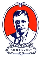 Theodore (Depression Press) Tags: blue red usa white america vintage logo stars design us 1930s election graphic united president politics roosevelt ornament seal badge printing americana states letterpress patriotism theodore 2008election depressionpress typecut