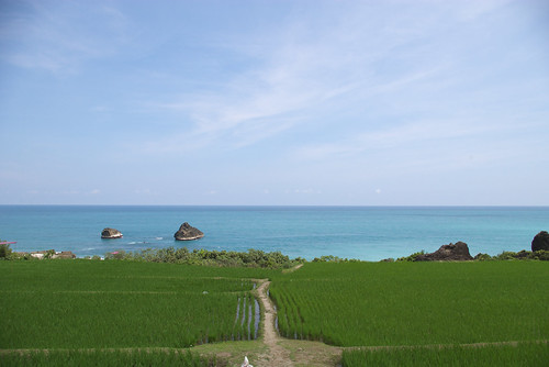 Farmland beside coast