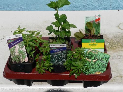 Einkäufe für den Garten
