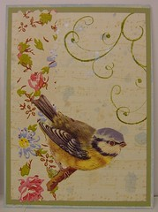 Birds n Bonnets swap 1