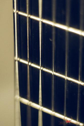 Guitar 8