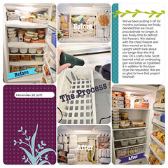 Freezer Defrost Nov 2015-1.jpg (girl231t) Tags: 04year 0scrapbooking 2015 zzprojectlifeapppages 0photos projectlifeapp scrapbook layout 12x12layout