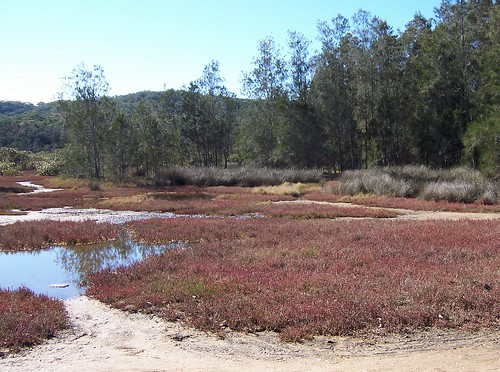 Saltmarsh, North Street Bensville
