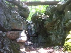 Walker Branch Mini Canyon