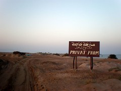 Shrimps Farm (sciack) Tags: sharmelsheikh nabq shrimpsfarm
