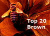 Top 20 Brown