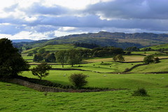 Lake District Fields - England ({ Planet Adventure }) Tags: england holiday canon wow photography eos photo interesting bravo photographer lakedistrict ab adventure stunning planet incredible thebest allrightsreserved interessante digitalphotography holidayphotos aroundtheworld stumbleupon copyright travelguide travelphotography beautifulplaces digitalworld intrepidtraveler allaround traveltheworld planetadventure colorfulworld worldexplorer wonderfulplaces amazingplanet amazingphotos by{planetadventure} byalessandrobehling aplusphoto intrepidtravel alessandrobehling stumbleit topphotography worldwidelandscapes holidayphotography alessandrobehling copyright20002008alessandroabehling colorfulearth photographyhunter photographyisgreatfun