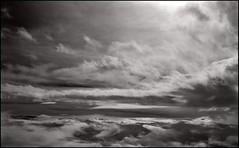 rococo skies